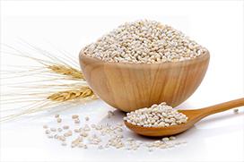 Barley-Grain